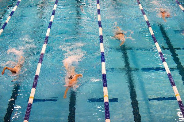 Swim Team is getting under way: Go, Stingrays!