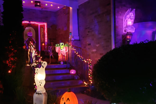 Stephens Grove gets in the spirit for Halloween